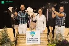Holstein, Championne junior