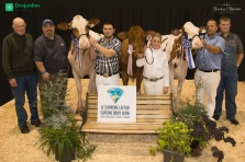 Holstein Rouge et blanc, Championnat junior